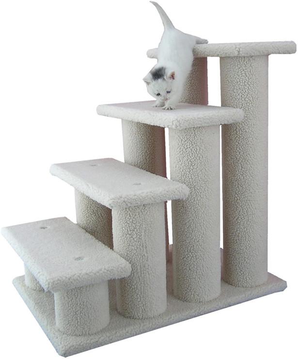 Tripawd cat steps