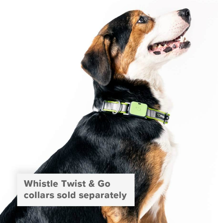 Whistle Twist and Go Pet Fitness Tracker
