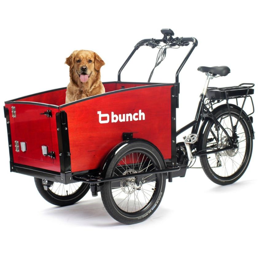 K9 Bunch Bike Dog Bike