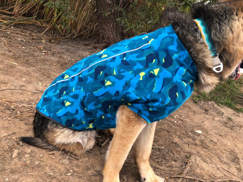 Best Tripawd Dog Sweater