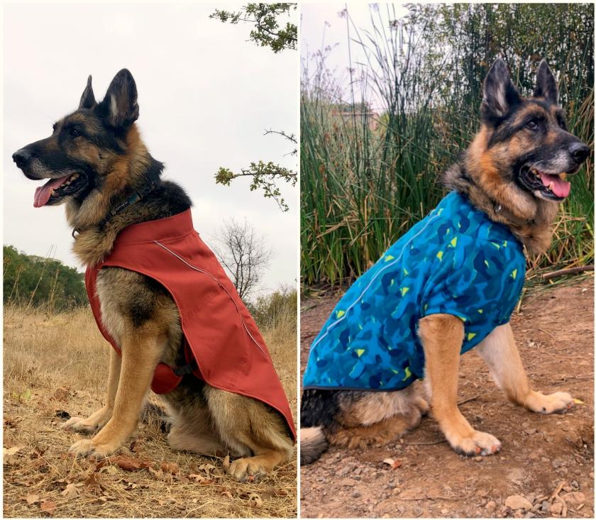 best Tripawd dog jacket