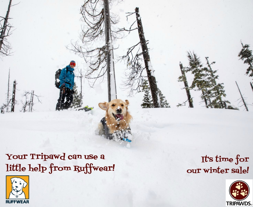 Ruffwear winter dog jacket sale