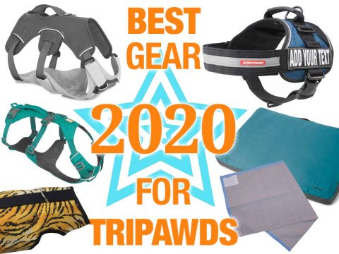 best gear for Tripawds