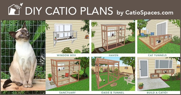 DIY Catio Plans