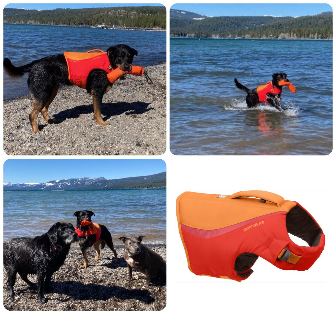 Ruffwear dog life vest for Tripawds