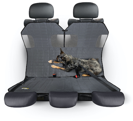 Tripawd dog car hammock reviews