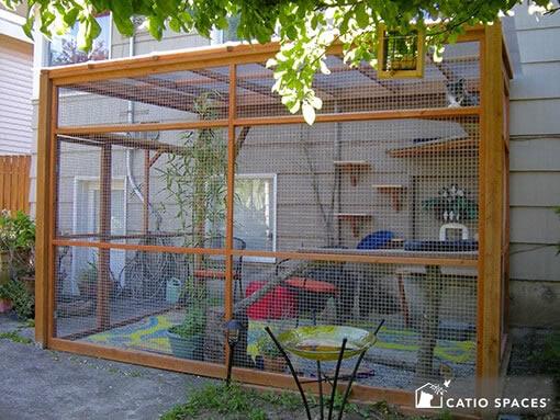 Outdoor cat enclosure idea
