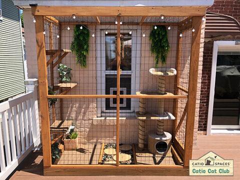 DIY cat enclosure plans